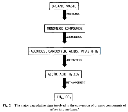 Figure 2: Overview of Anaerobic Reaction