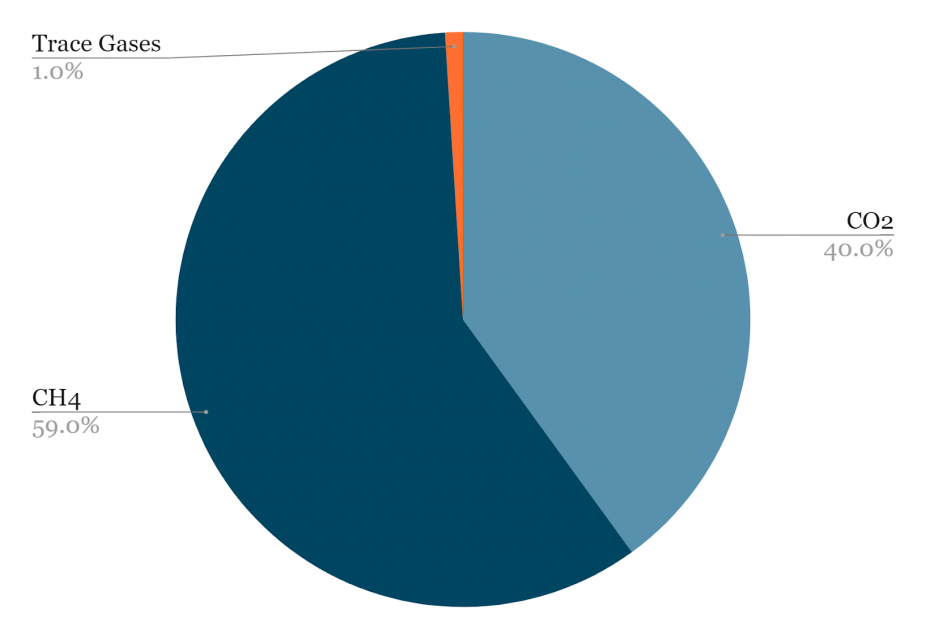 Figure 7: Typical LFG Composition
