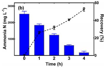 Figure 4.11: Remaining Ammonia Nitrogen in Leachate (column) and ammonia recovery percentage (dot plots)