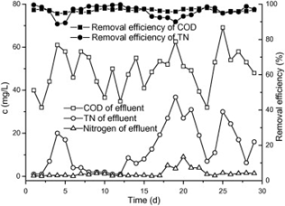 Figure 4.8: Removal Efficiency and Effluent Characteristics